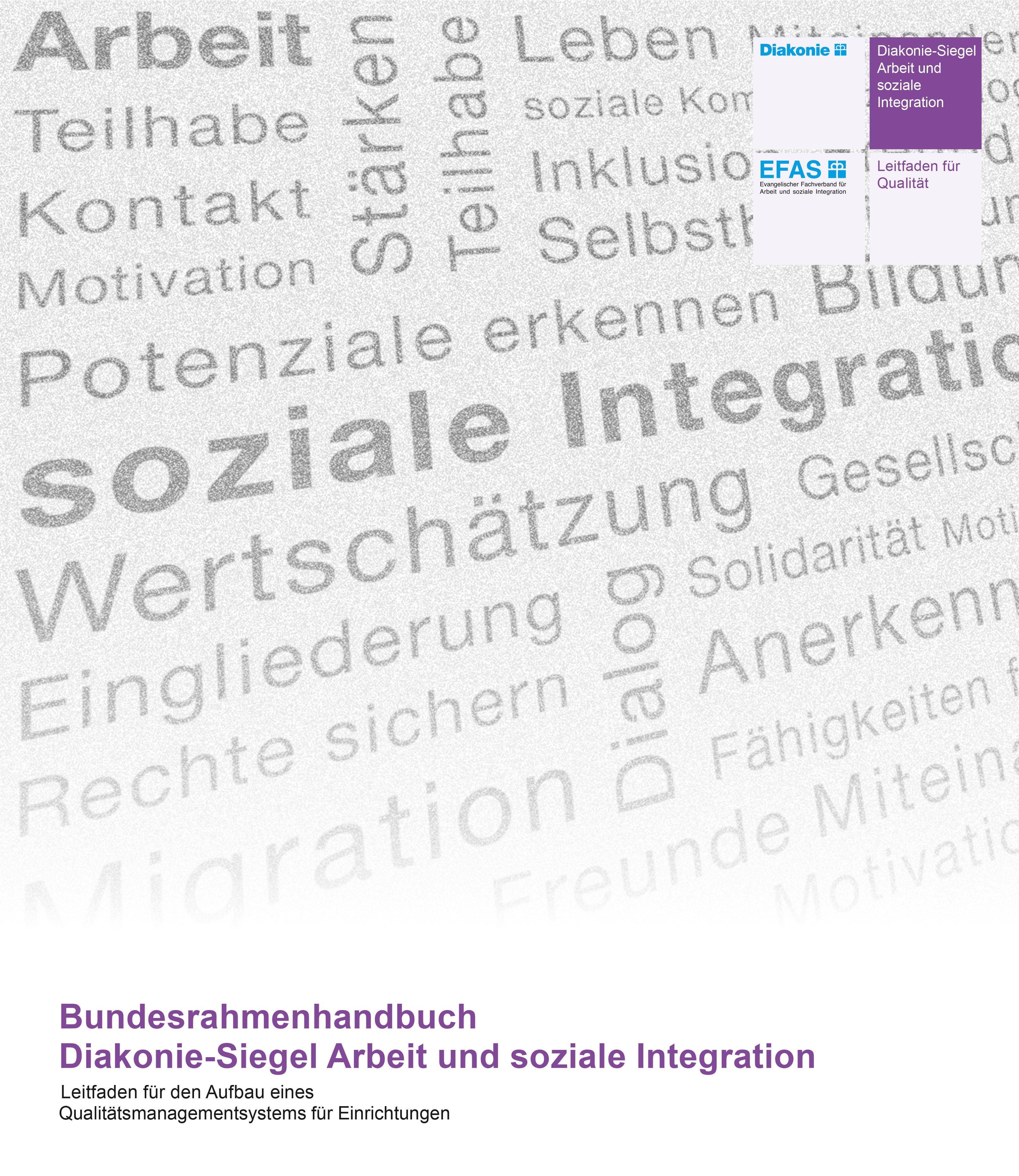 Arbeitshilfe Diakonie-Siegel Arbeit und soziale Integration (CD-ROM)
